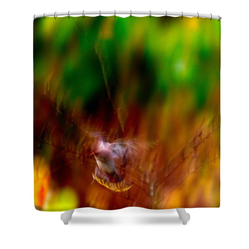Autumn Shower Curtain featuring the photograph Bohemian Waxwing by Jouko Lehto