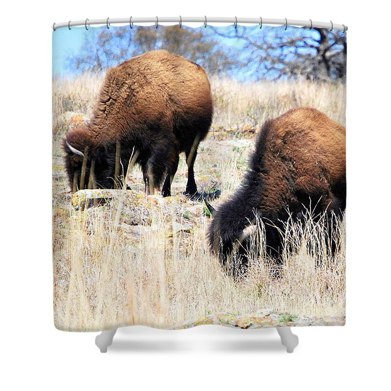Landscape Shower Curtain featuring the photograph Buffalo by Mickey Harkins