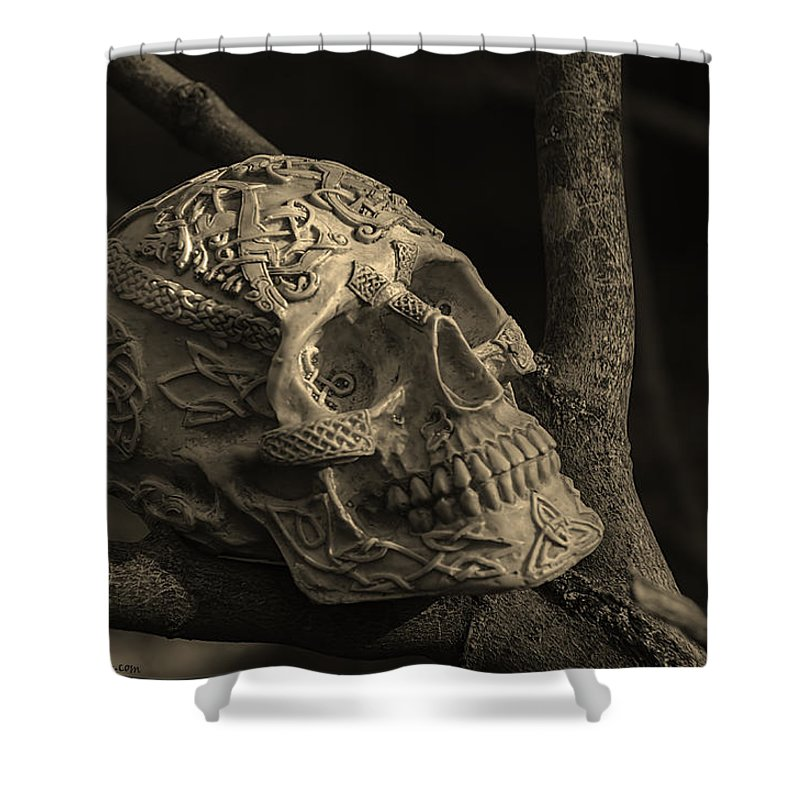 Usa Shower Curtain featuring the photograph Celtic Skulls Symbolic Pathway To The Other World by LeeAnn McLaneGoetz McLaneGoetzStudioLLCcom