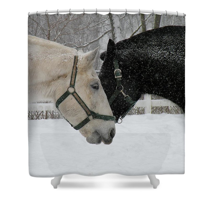 Horses Shower Curtain featuring the photograph Friends by Jeffrey Akerson