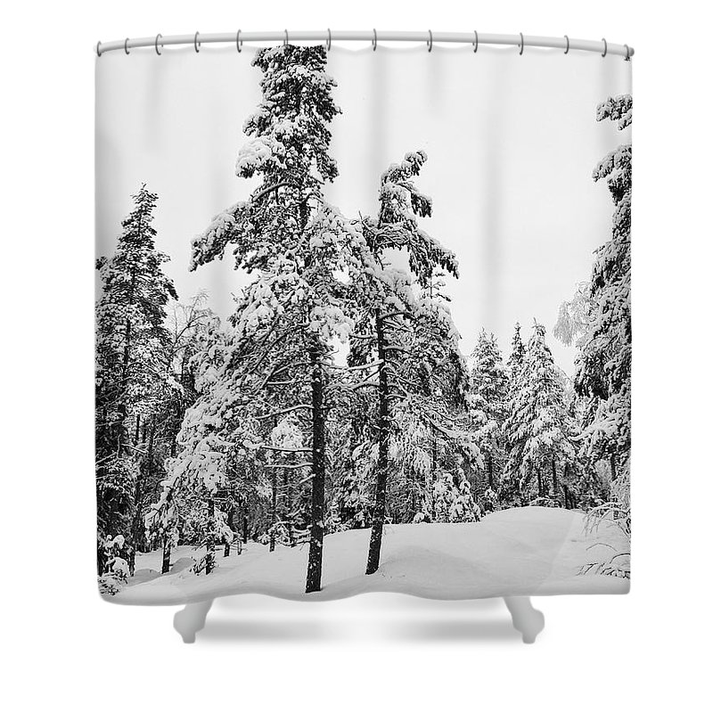 Finland Shower Curtain featuring the photograph Pine Forest Winter by Jouko Lehto
