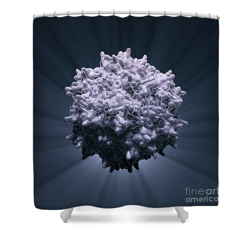 Adeno-associated Virus Shower Curtain featuring the photograph Adeno-associated Virus by Science Picture Co