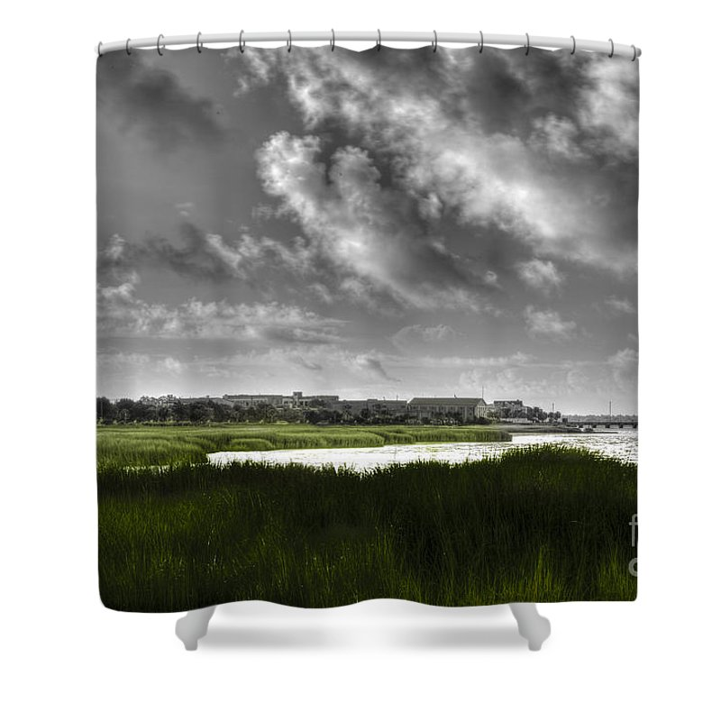 Lowcountry Shower Curtain featuring the photograph Southern Tall Marsh Grass by Dale Powell