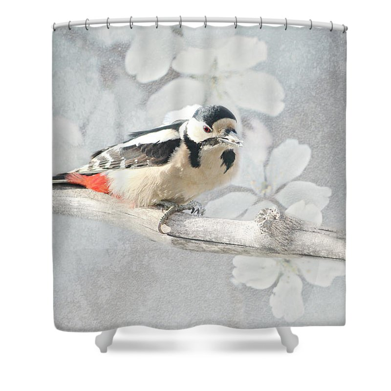 Animal Shower Curtain featuring the mixed media Woodpecker by Heike Hultsch