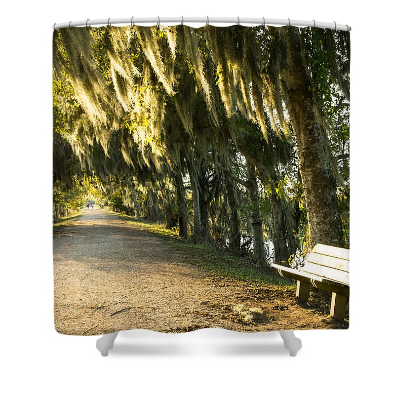 Autumn Shower Curtain featuring the photograph A Bench Under Golden Spanish Moss by Ellie Teramoto