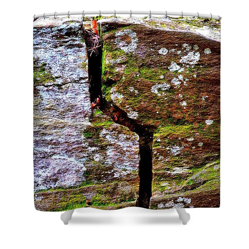 Sweetwater Creek State Park Shower Curtain featuring the photograph A Bit Cracked by Tara Potts