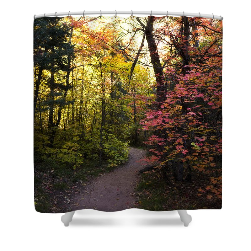 Fall Colors Shower Curtain featuring the photograph A Colorful Path by Saija Lehtonen