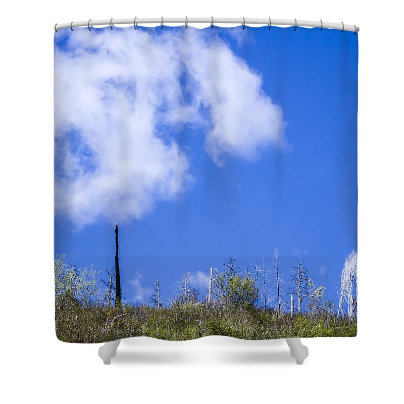 Myrtle Creek Drainage Shower Curtain featuring the photograph A Cotton-candy Day by Albert Seger