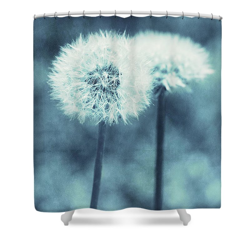 Weed Shower Curtain featuring the photograph A Dandy In Blue by Pam Holdsworth