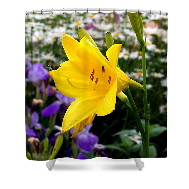 Lily Shower Curtain featuring the photograph A Fly In The Ointment by Kathy McClure