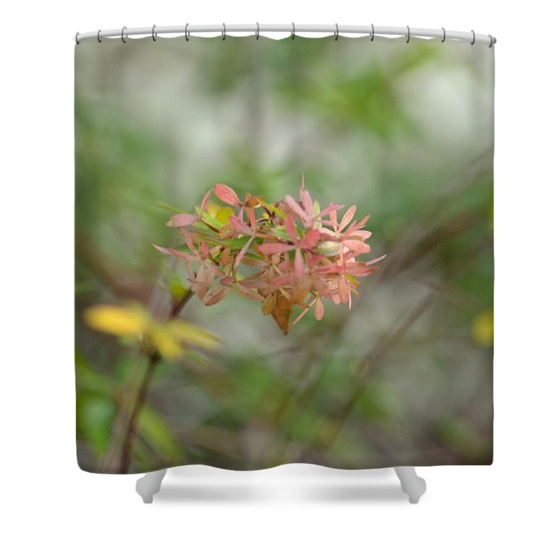 A Glimpse Of Spring To Come Shower Curtain featuring the photograph A Glimpse Of Spring To Come by Maria Urso