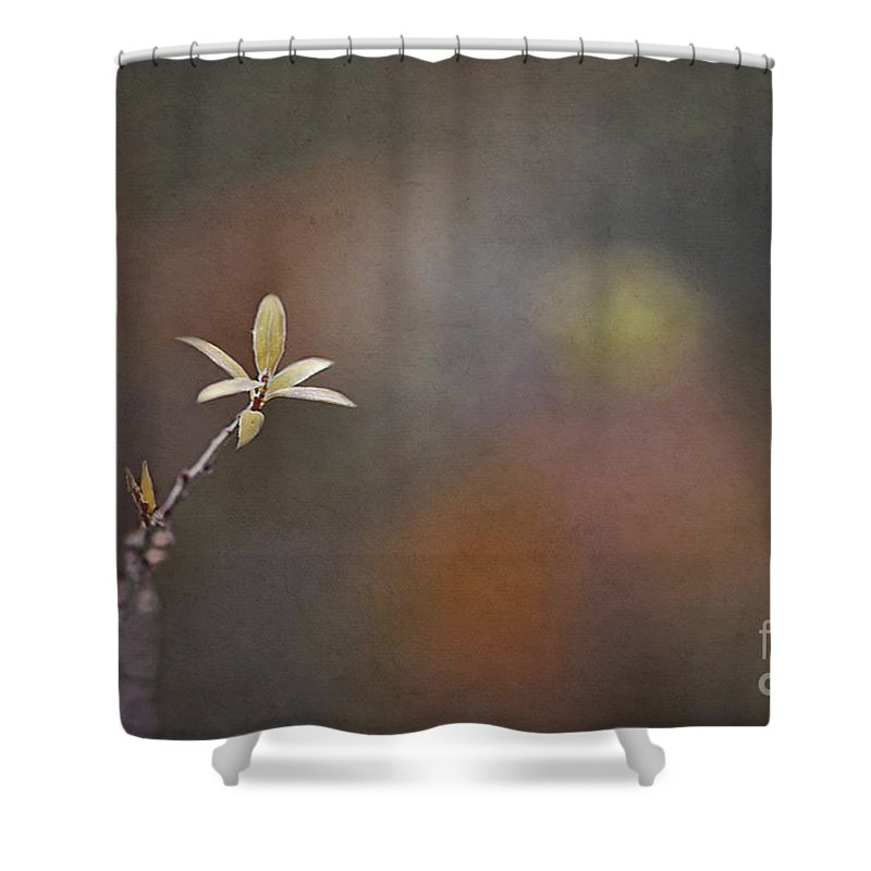 Shower Curtain featuring the photograph A Light In The Dark by Maria Ismanah Schulze-Vorberg