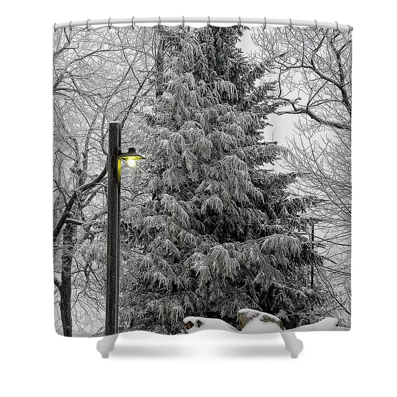 Snow Shower Curtain featuring the photograph A Light Snow by Lois Bryan