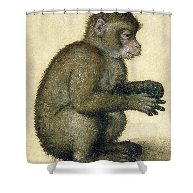 Albrecht Durer Shower Curtain Featuring The Painting A Monkey By