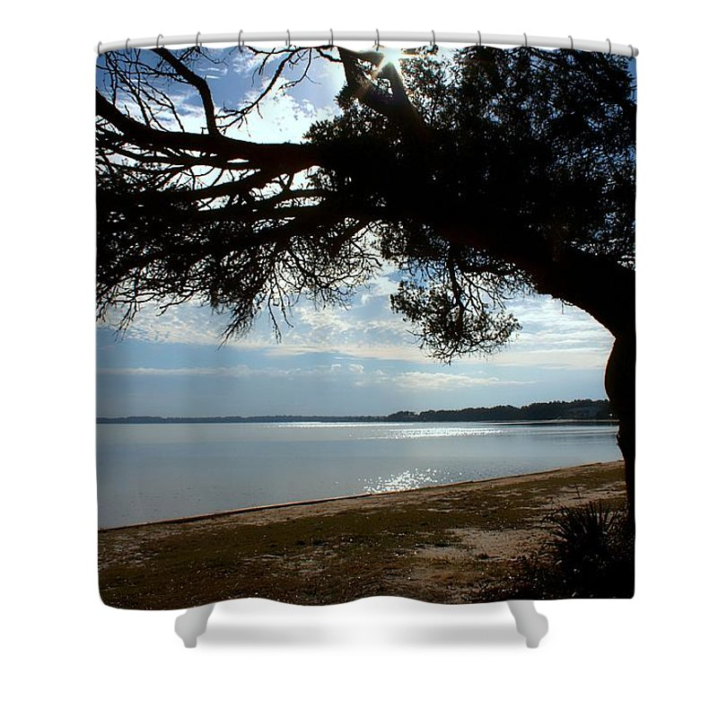 Park Shower Curtain featuring the photograph A Park With Tranquil Moments by Debra Forand