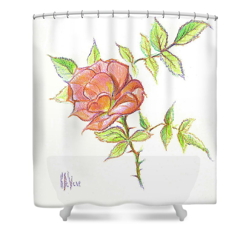 A Rose In Brigadoon Shower Curtain featuring the drawing A Rose In Brigadoon by Kip DeVore