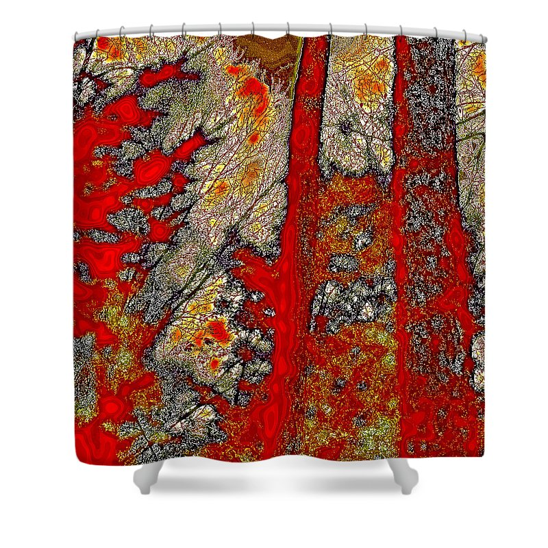 David Patterson Shower Curtain featuring the photograph A Touch Of Autumn Abstract Vi by David Patterson