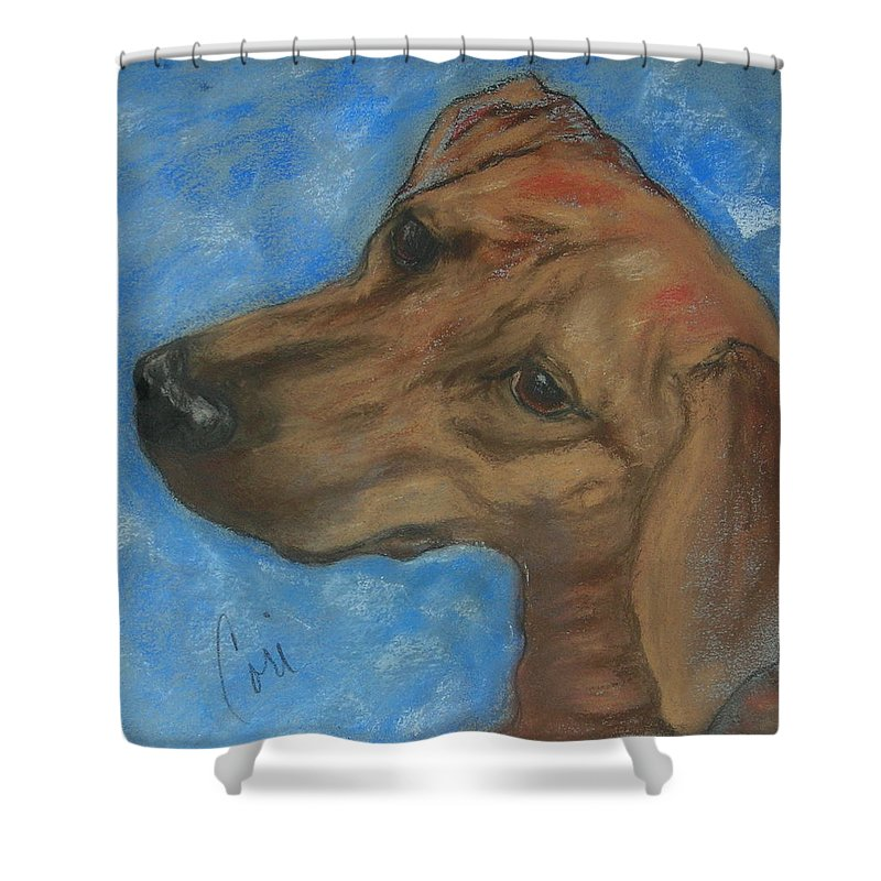 Pastel Shower Curtain featuring the drawing A Twist Of Might by Cori Solomon