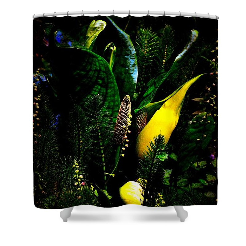 Newel Hunter Shower Curtain featuring the photograph A Walk In The Woods 4 by Newel Hunter