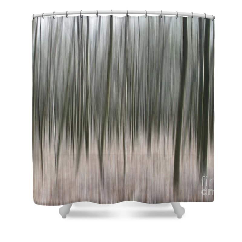Trees Shower Curtain featuring the photograph Abstract Trees 4 by Circe Lucas