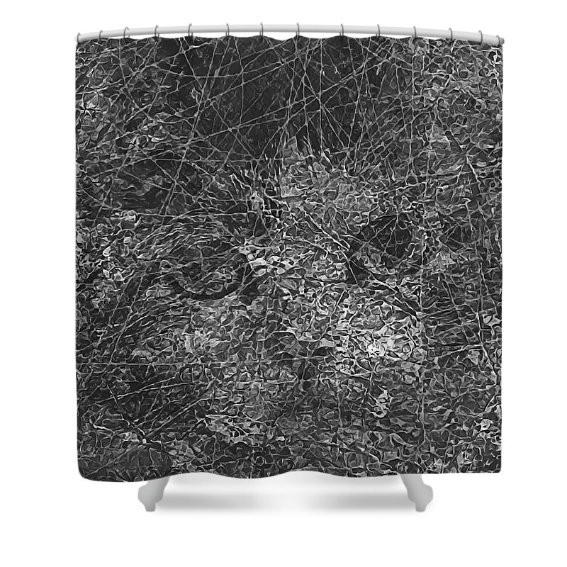 Graphics Shower Curtain featuring the digital art Abstraction 423 - Marucii by Marek Lutek