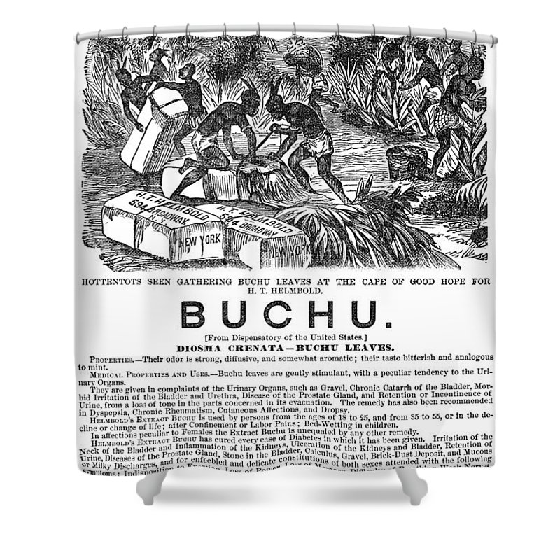 1871 Shower Curtain featuring the photograph Advertisement: Buchu, 1871 by Granger