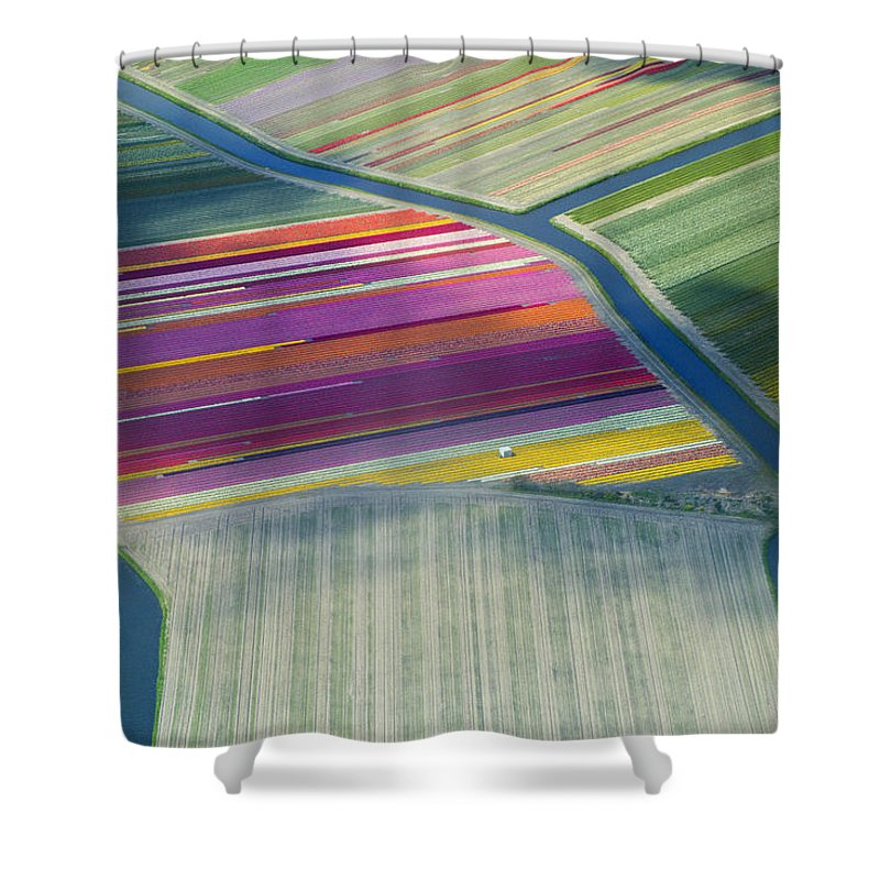 Curve Shower Curtain featuring the photograph Aerial View Of Flower Fields In Spring by Frans Sellies