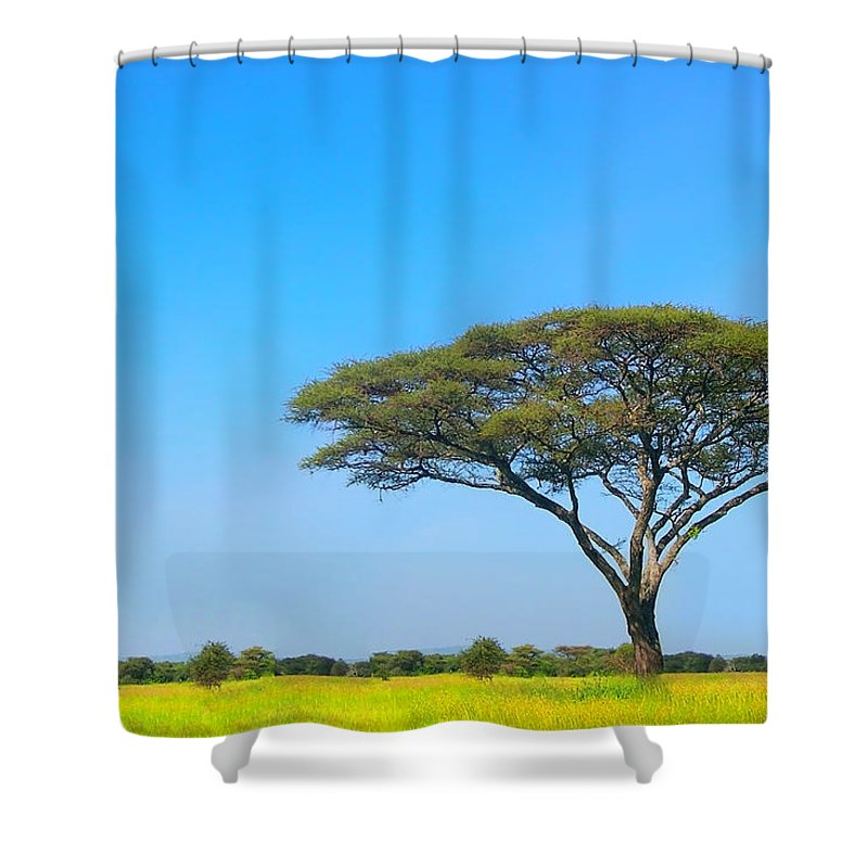 Africa Shower Curtain featuring the photograph Africa by Sebastian Musial