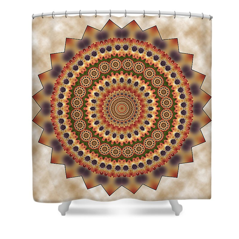 African Daisy Shower Curtain featuring the photograph African Daisy 2 by Liz Mackney