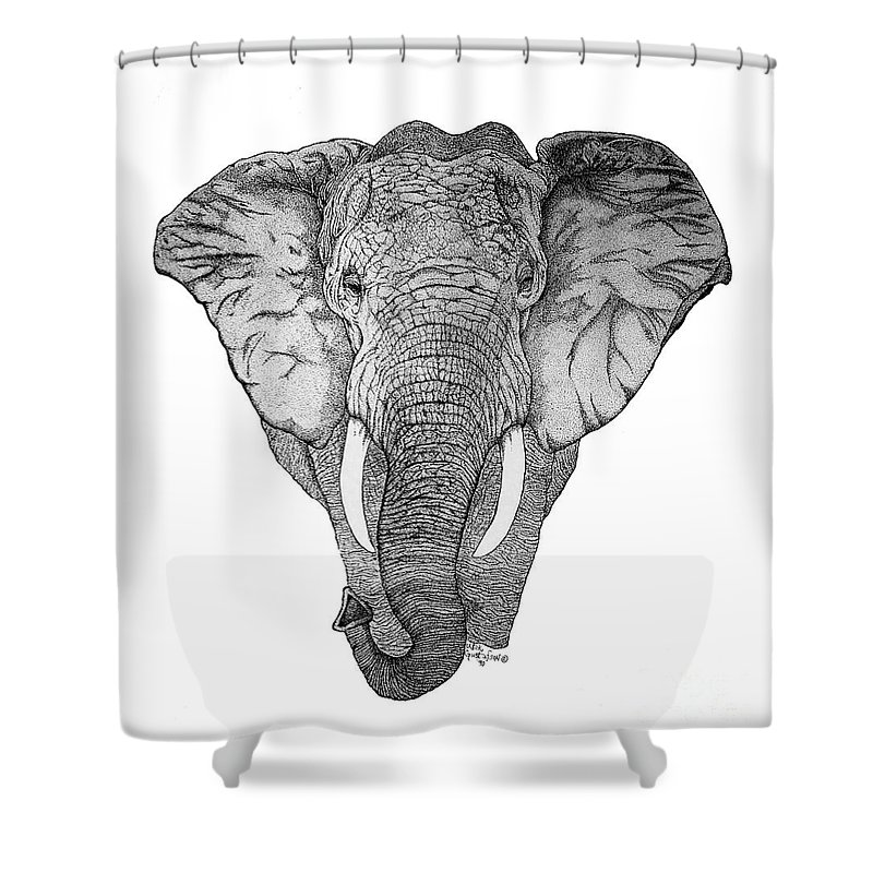Elephant African Nature Wildlife Animal Elephants Animals Pen And Ink Elephant Shower Curtain featuring the drawing African Elephant by Nick Gustafson