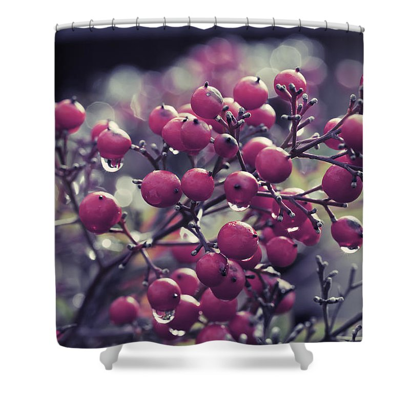 Berries Shower Curtain featuring the photograph After The Rain by Angela Stanton