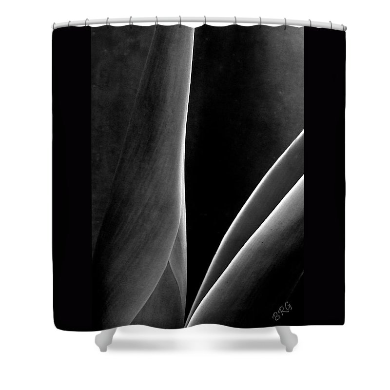 Agave Shower Curtain featuring the photograph Agave by Ben and Raisa Gertsberg