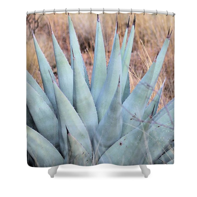 Shower Curtain featuring the photograph Agave Plant In The Chisos Mountains by G Berry