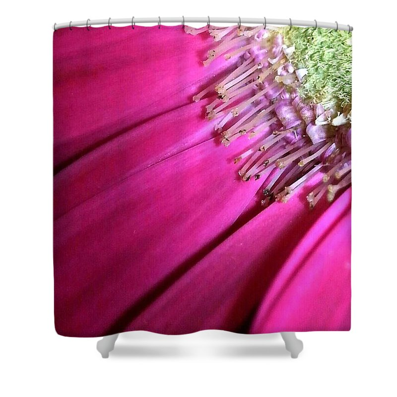 Pink Shower Curtain featuring the photograph Alien Nation by Christine Hirtle