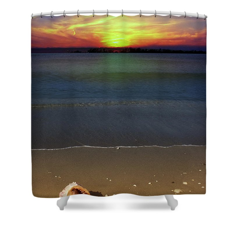 Seashell Shower Curtain featuring the photograph All Washed Up by Regina Williams