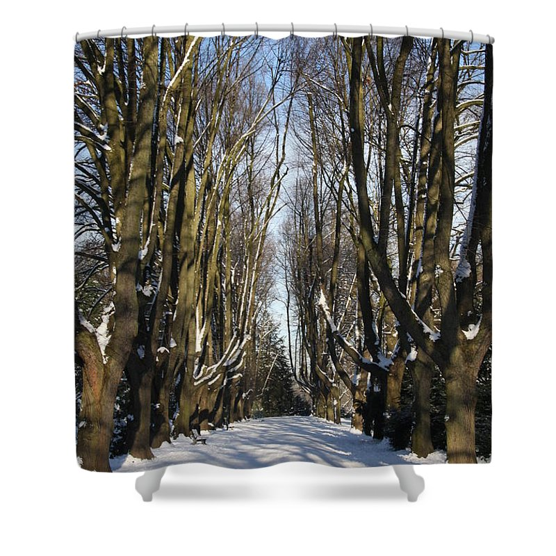Trees Shower Curtain featuring the photograph Alley In The Snow by Christiane Schulze Art And Photography