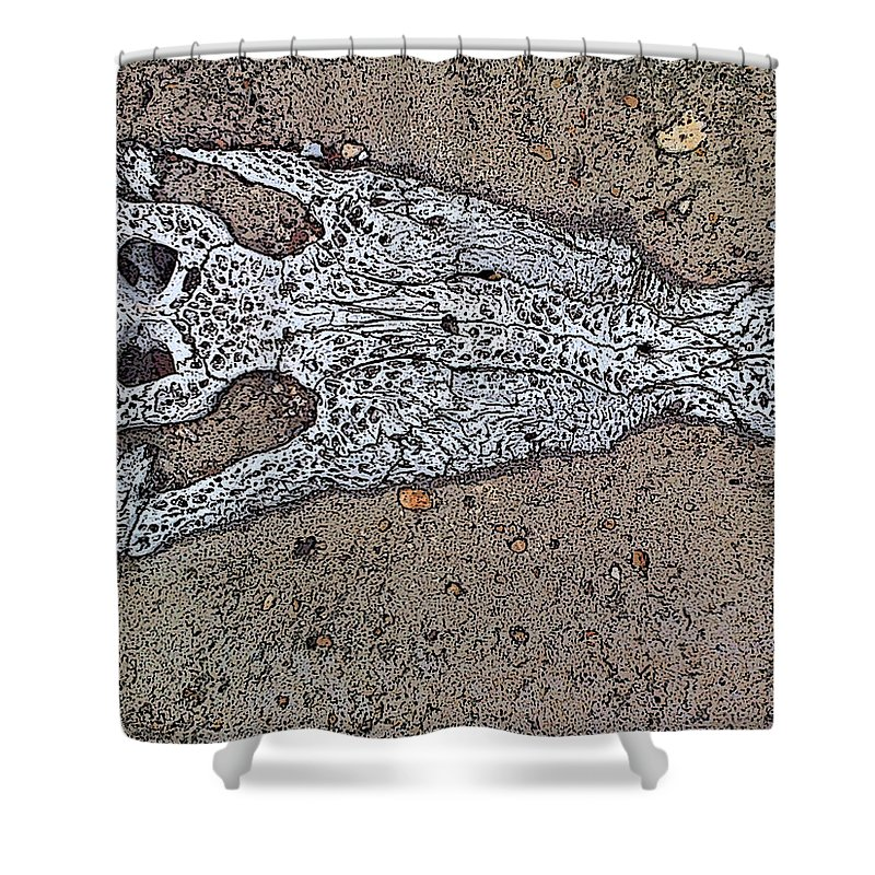 Skull Shower Curtain featuring the painting Alligator Skull Fossil 1 by George Pedro