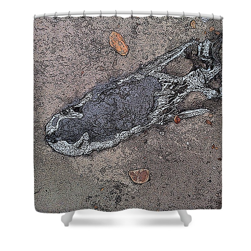 Skull Shower Curtain featuring the painting Alligator Skull Fossil 2 by George Pedro