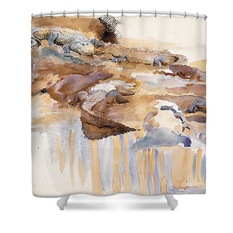 John Singer Sargent Shower Curtain featuring the painting Alligators by John Singer Sargent