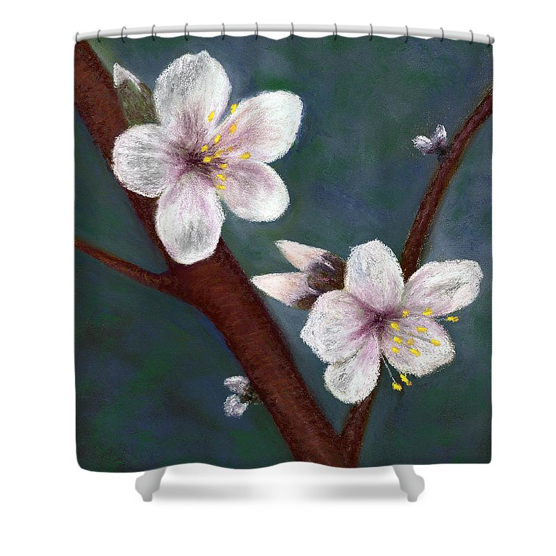Almond Flowers Shower Curtain featuring the pastel Almond Blossoms by Ginny Neece