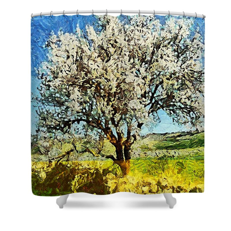 Spring Shower Curtain featuring the painting Almond Tree by Dragica Micki Fortuna