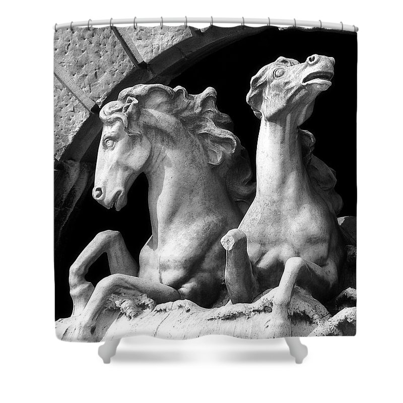 Sculpture Shower Curtain featuring the pyrography Almost Perfect by RC DeWinter