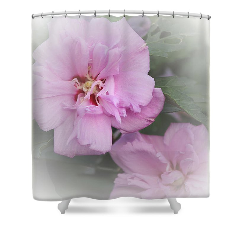 Althea Shower Curtain featuring the photograph Althea by Karen Beasley
