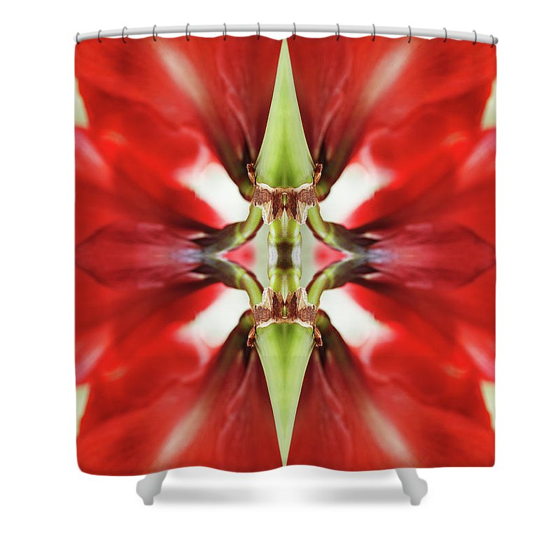 Tranquility Shower Curtain featuring the photograph Amaryllis Flower by Silvia Otte