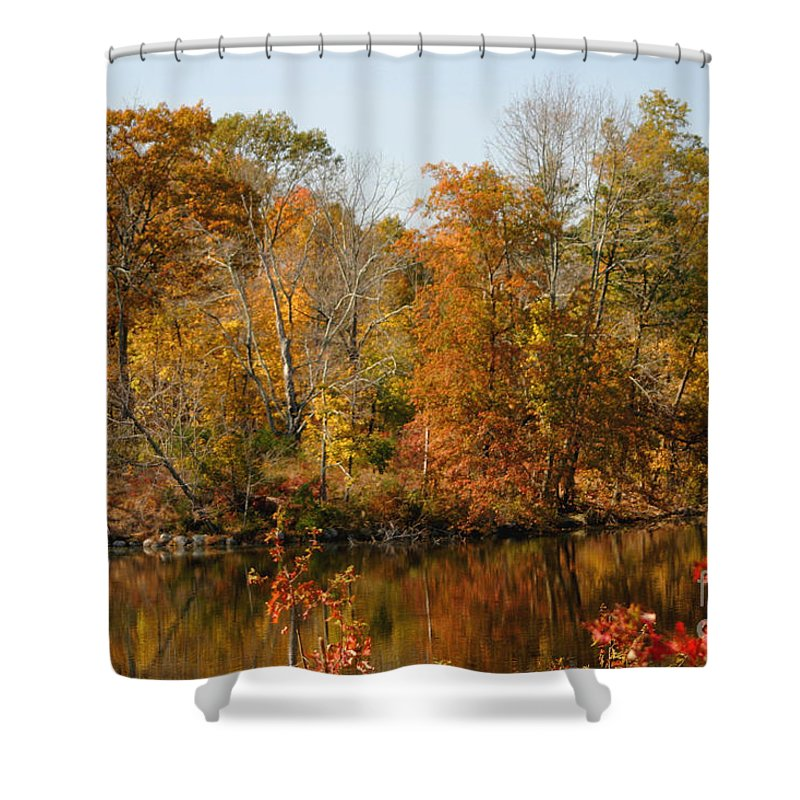 Autumn Shower Curtain featuring the photograph Amber Days by Living Color Photography Lorraine Lynch