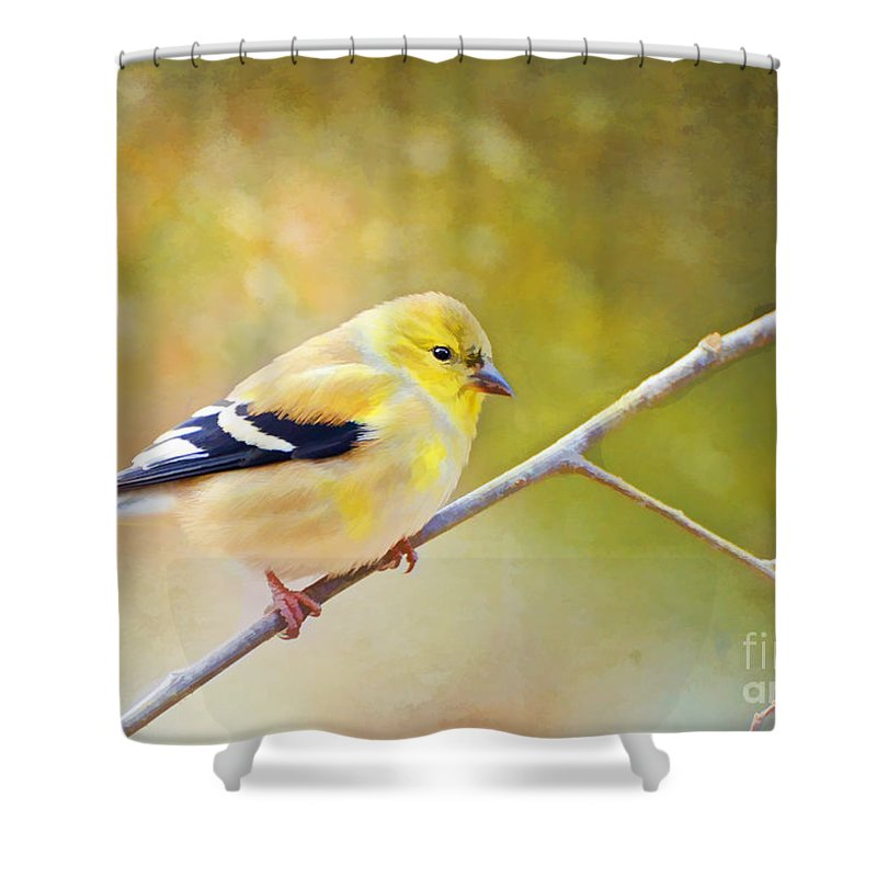 Branch Shower Curtain featuring the photograph American Goldfinch - Digital Paint by Debbie Portwood