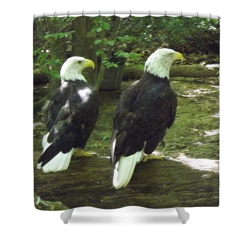 Bald Eagle Shower Curtain featuring the digital art American Pride by Barkley Simpson