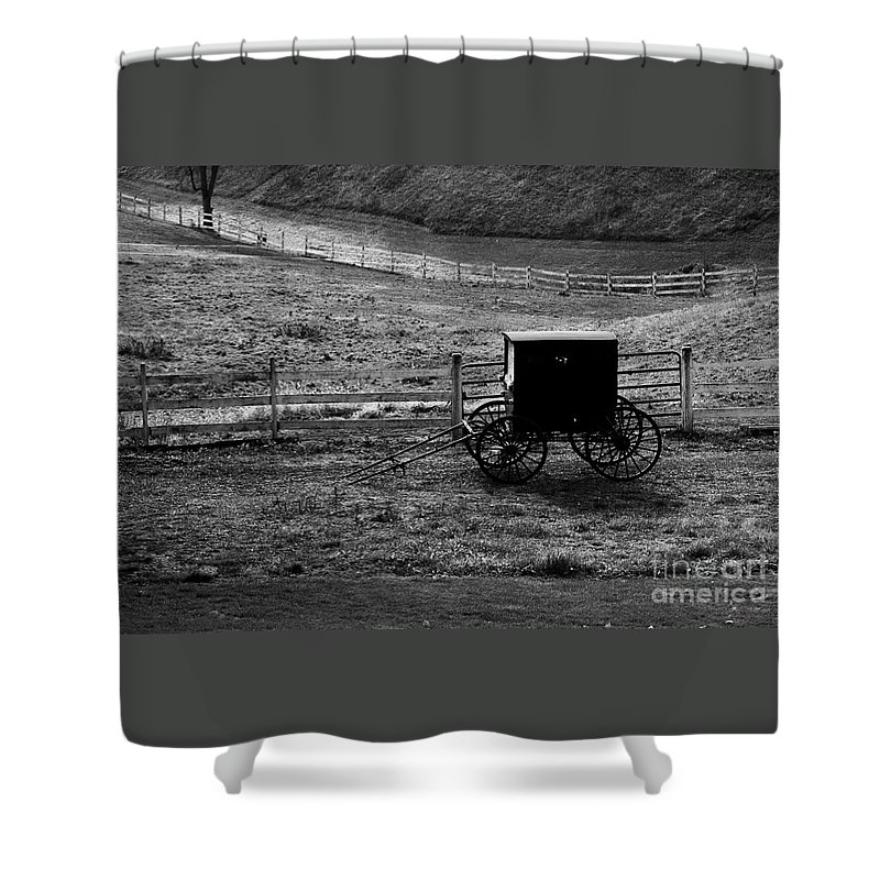 Amish Shower Curtain featuring the photograph Amish Buggy by Kathleen Struckle