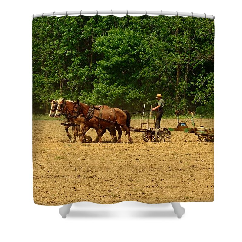 Paul Ward Shower Curtain featuring the photograph Amish Farmer Tilling The Fields by Paul Ward