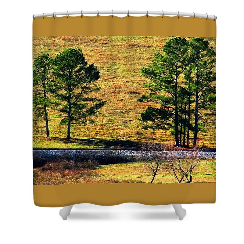 Landscape Shower Curtain featuring the photograph Among The Trees by Kathy R Thomas
